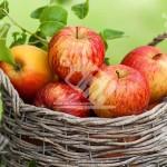 فواید و تاریخچه سیب
