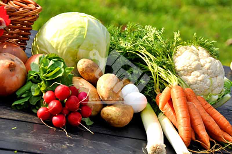 آشپزی-دانستنی های آشپزی-کنترل وزن با مصرف میوه ها و سبزیجات