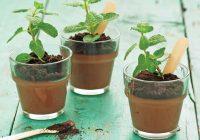 پودینگ شکلات-نعنا گلدانی