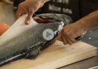 چگونه ماهی سالمون را فیله کنیم؟