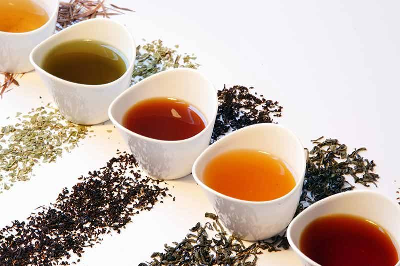 چای مناسب هر گروه خونی