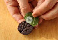 چگونه برگ شکلاتی برای تزیین دسر درست کنیم؟