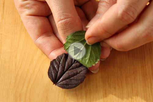 چگونه برگ شکلاتی برای تزیین دسر درست کنیم-مدرسه آشپزی آشپزخانک