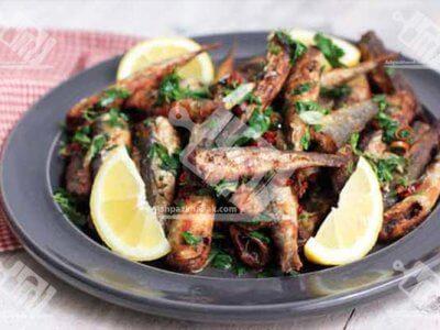 خوراک ماهی کیلکا