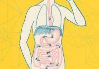 سلامت روده با ۱۰ روش