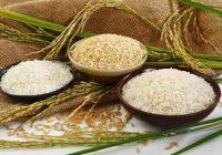 خواص برنج قهوه ای با برنج سفید