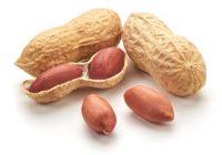فواید و عوارض مصرف بادام زمینی