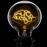 7 عامل کلیدی برای حفظ عملکرد مطلوب مغز با افزایش سن