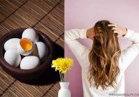 زرده تخم مرغ و زیبایی و تغذیه مو