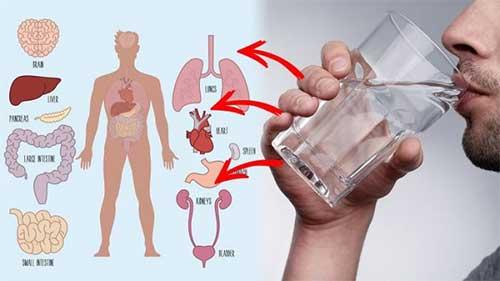 فواید نوشیدن آب با معده خالی